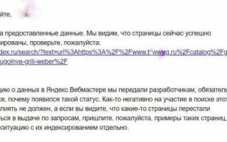 Яндекс.Вебмастер подтвердил ошибку с вылетом страниц из индекса