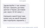Яндекс.Диалоги: что известно год спустя