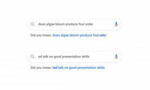 Google поделился большим отчетом о своих новинках