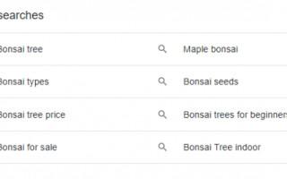 Google тестирует блочные связанные запросы в пользовательском интерфейсе