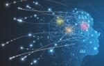 Neural Matching: что представляет собой новый алгоритм Google