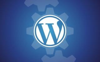 В WordPress появится автоматическое обновление тем и плагинов