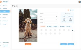 Чем полезны Сторис для сайтов и как их разместить на своем ресурсе с помощью Flyvi