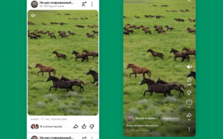 Яндекс.Дзен добавил поддержку авторов коротких видео