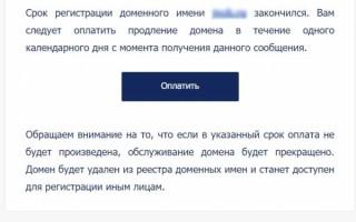 Как мошенники пытались развести владельца домена