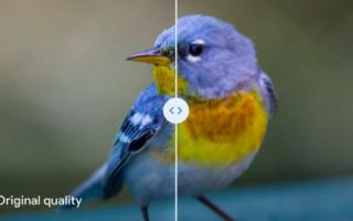 Режим «Высокое качество» в Google Photo может испортить фотографии