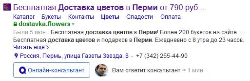 Пример подробно заполненного сниппета в Яндекс.Диалогах